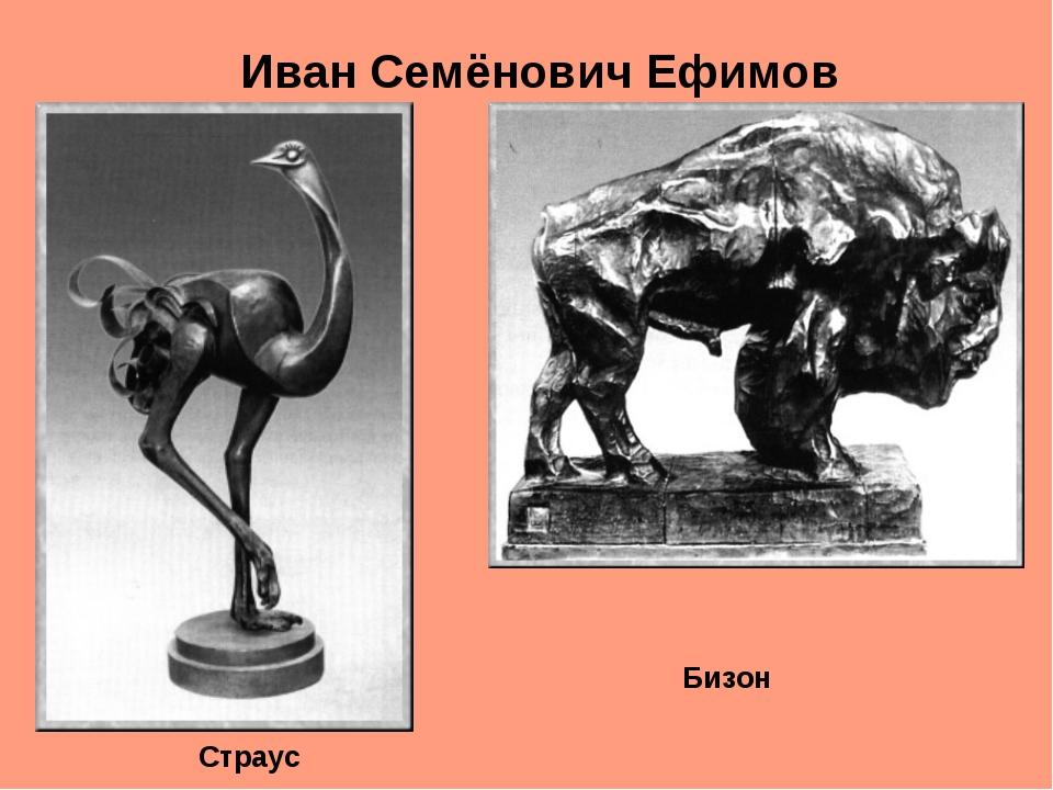 Иван Семёнович Ефимов Страус Бизон