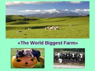 «The World Biggest Farm»