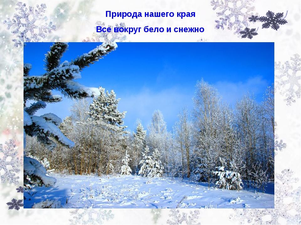 Природа нашего края Все вокруг бело и снежно