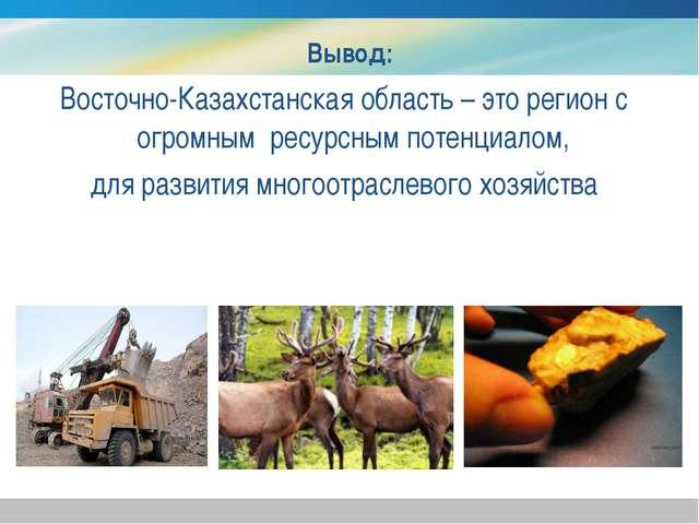 Вывод: Восточно-Казахстанская область – это регион с огромным ресурсным поте...