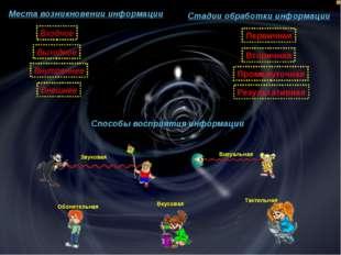 Места возникновении информации Стадии обработки информации Способы восприятия