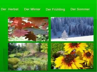 Der Herbst Der Winter Der Frühling Der Sommer