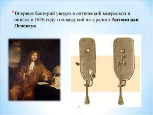 Впервые бактерий увидел в оптический микроскоп и описал в 1676 году голландск