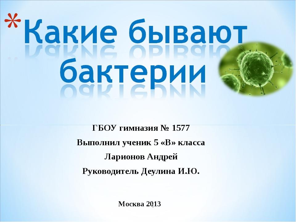 ГБОУ гимназия № 1577 Выполнил ученик 5 «В» класса Ларионов Андрей Руководител...
