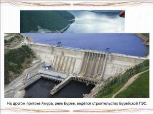 На реке Зея – притоке Амура – действует крупная ГЭС. На другом притоке Амура,