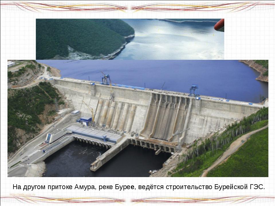 На реке Зея – притоке Амура – действует крупная ГЭС. На другом притоке Амура,...