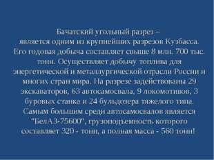 Бачатский угольный разрез – является одним из крупнейших разрезов Кузбасса. Е