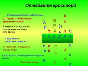 Отгадайте кроссворд 1.Короткое название ледяной зоны А р к Т и к а 2. Птица с