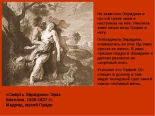 «Смерть Эвридики» Эраз Квеллин, 1636-1637 гг. Мадрид, музей Прадо Не заметила