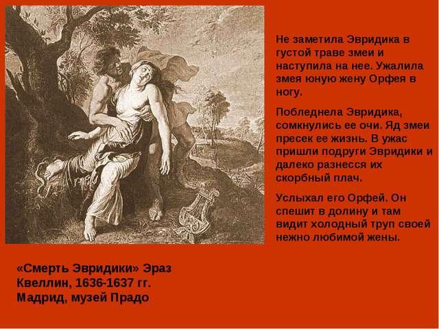 «Смерть Эвридики» Эраз Квеллин, 1636-1637 гг. Мадрид, музей Прадо Не заметила...