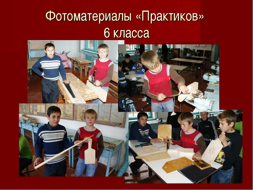 Фотоматериалы «Практиков» 6 класса