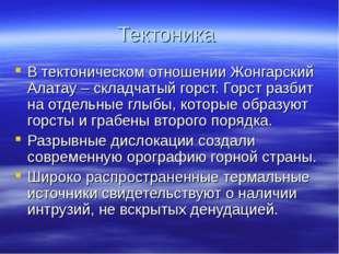 Тектоника В тектоническом отношении Жонгарский Алатау – складчатый горст. Гор