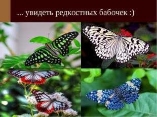 ... увидеть редкостных бабочек :)