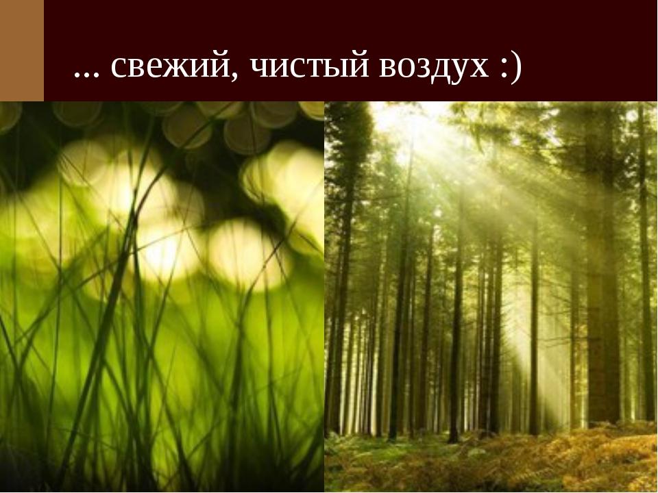 ... свежий, чистый воздух :)