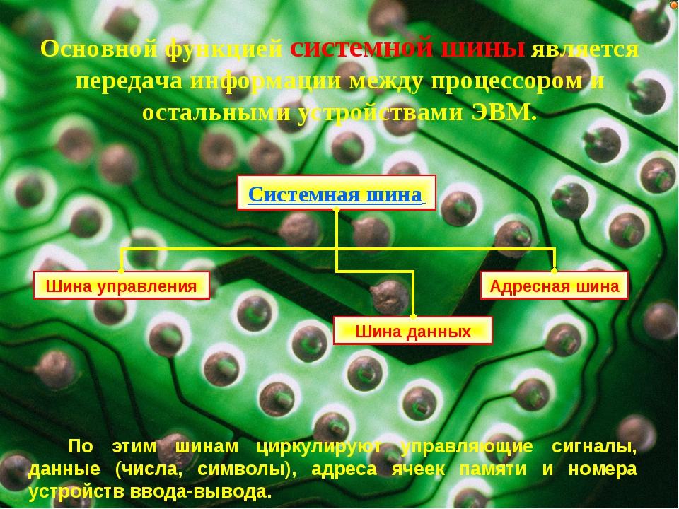 Основной функцией системной шины является передача информации между процессор...