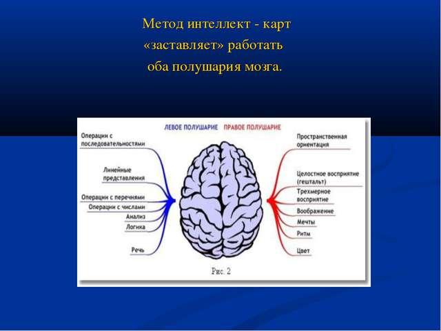 Метод интеллект - карт «заставляет» работать оба полушария мозга.