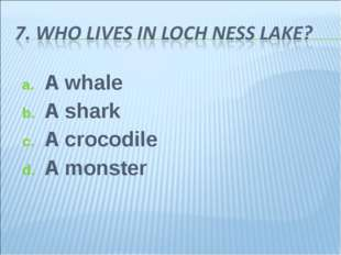A whale A shark A crocodile A monster