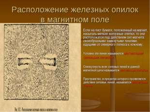 Расположение железных опилок в магнитном поле Если на лист бумаги, положенный