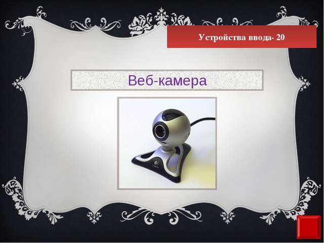 Устройства ввода- 20 Веб-камера