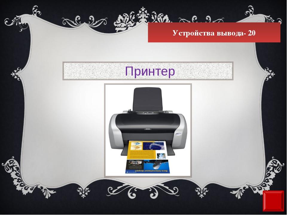 Устройства вывода- 20 Принтер