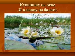 Кувшинку на реке И клюкву на болоте