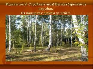 Родины леса! Стройные леса! Вы их сберегите от порубки, От пожаров с дымом до