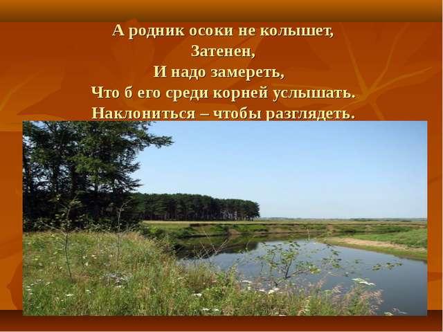 А родник осоки не колышет, Затенен, И надо замереть, Что б его среди корней у...