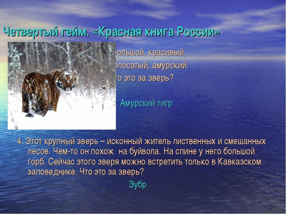 Четвертый гейм. «Красная книга России» 3. Большой, красивый, полосатый, амурс...