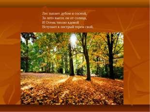 Лес пахнет дубом и сосной, За лето высох он от солнца, И Осень тихою вдовой В