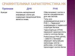 * ПризнакиДНКРНК ФункцииНоситель наследственной информации: участки днк, к