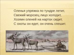 Оленья упряжка по тундре летит, Свежий морозец лицо холодит, Хозяин оленей на
