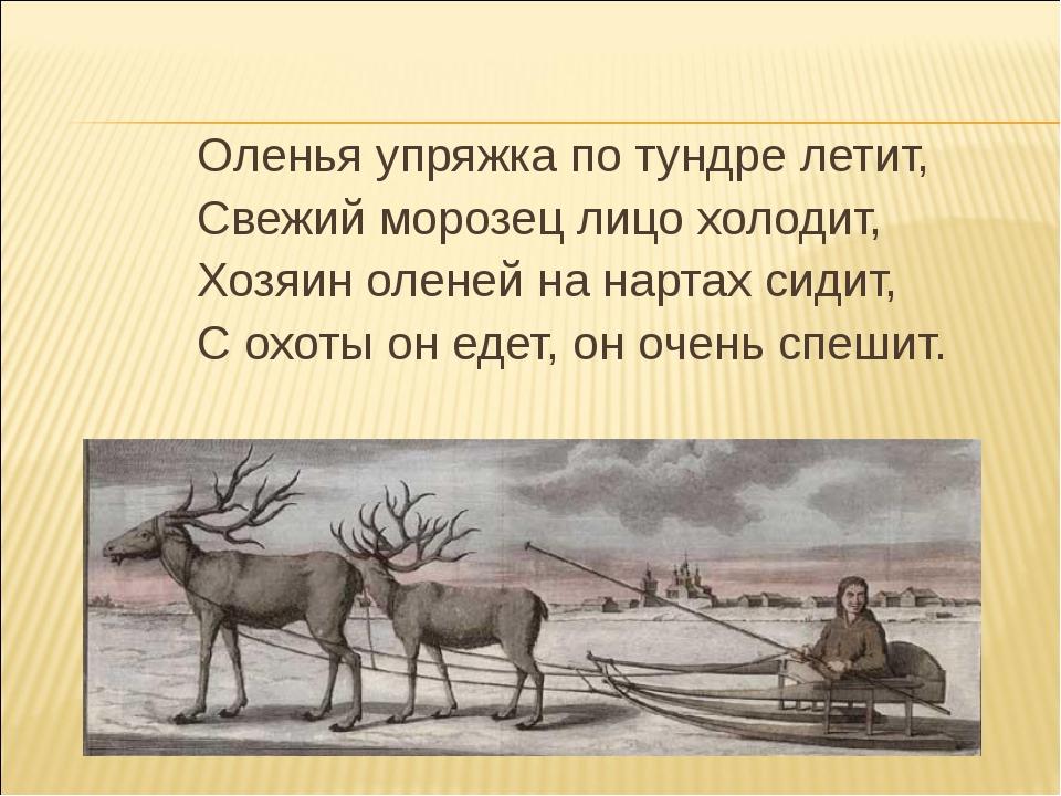 Оленья упряжка по тундре летит, Свежий морозец лицо холодит, Хозяин оленей на...