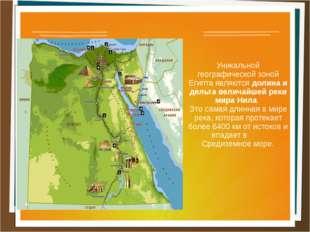 Уникальной географической зоной Египта являются долина и дельта величайшей р