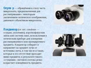 Окуля́р— обращённая к глазу часть микроскопа, предназначаемая для рассматрив