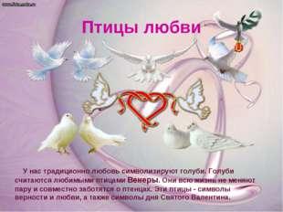 Птицы любви У нас традиционно любовь символизируют голуби. Голуби считаются л