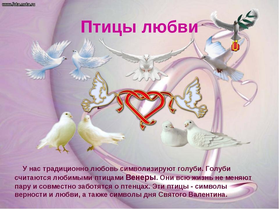 Птицы любви У нас традиционно любовь символизируют голуби. Голуби считаются л...