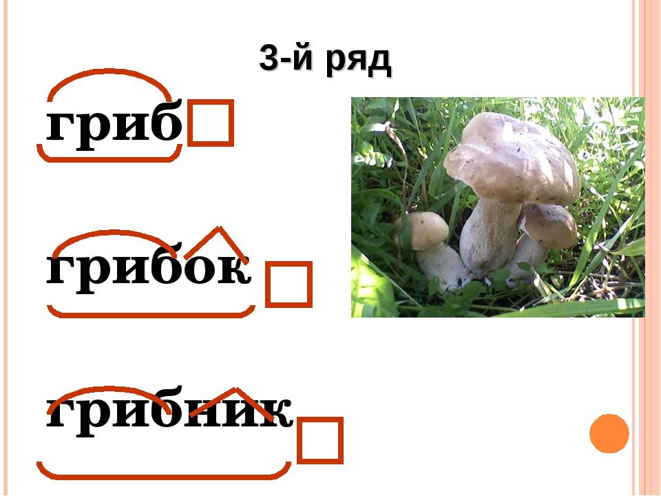 гриб грибок грибник 3-й ряд