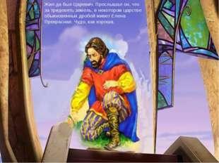 Жил да был Царевич. Прослышал он, что за тридевять земель, в некотором царств