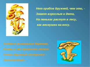 Нет грибов дружней, чем эти, - Знают взрослые и дети, На пеньках растут в лес