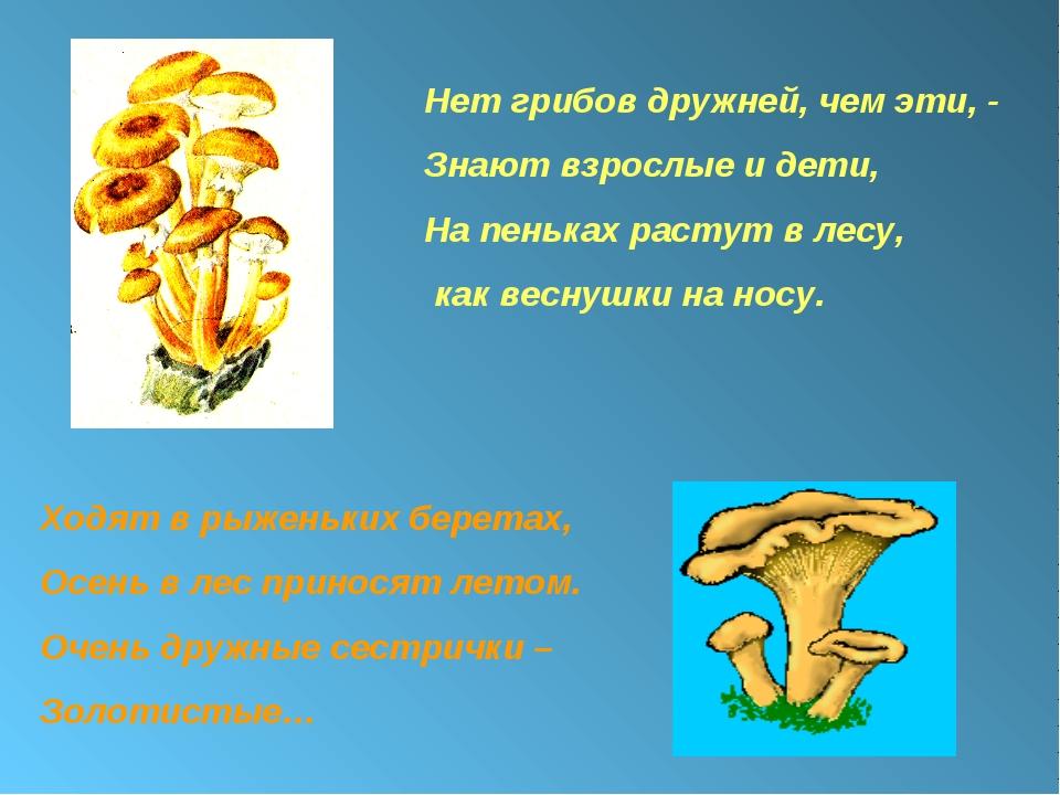 Нет грибов дружней, чем эти, - Знают взрослые и дети, На пеньках растут в лес...