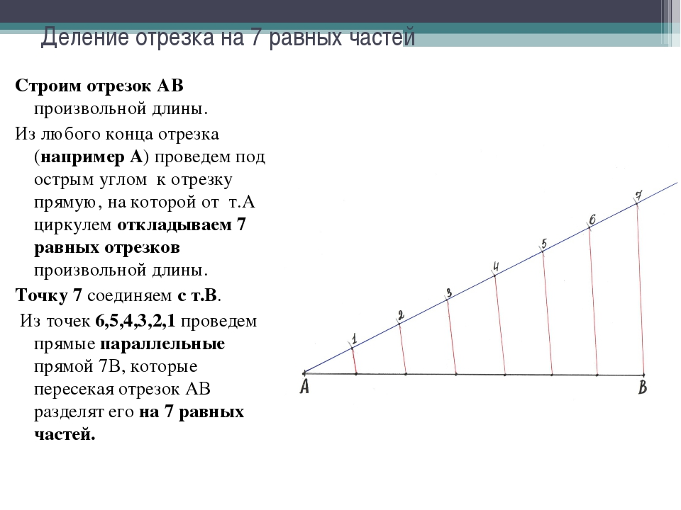 Деление отрезка на 7 равных частей Строим отрезок АВ произвольной длины. Из л...