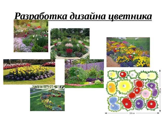 Разработка дизайна цветника