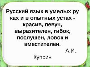 Русскийязыквумелыхрукахивопытныхустах-красив,певуч, выразителен, г
