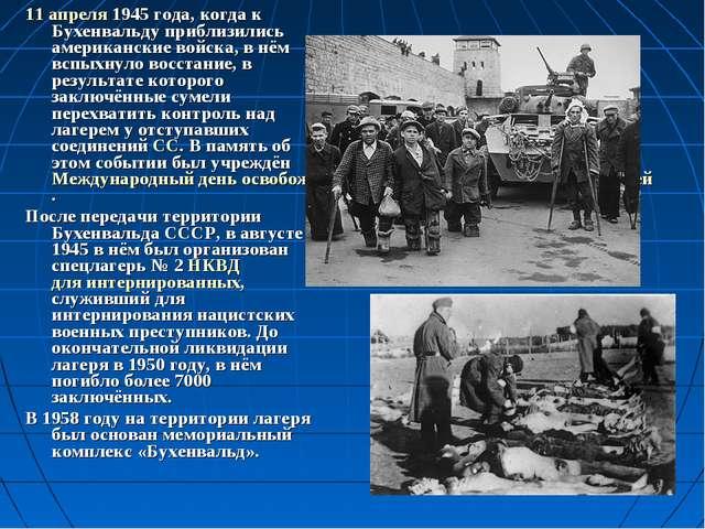 11 апреля1945 года, когда к Бухенвальду приблизились американские войска, в...