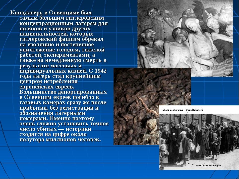 Концлагерь в Освенциме был самым большим гитлеровским концентрационным лагере...