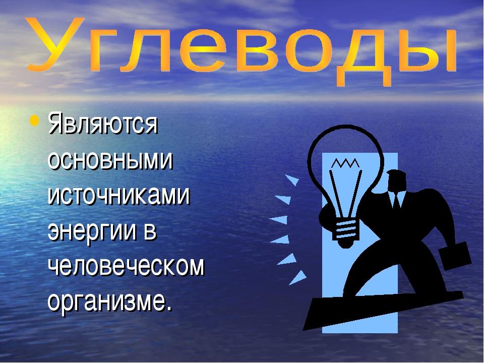 Являются основными источниками энергии в человеческом организме.