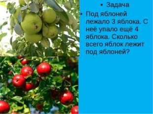 Задача Под яблоней лежало 3 яблока. С неё упало ещё 4 яблока. Сколько всего я
