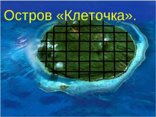 Остров «Клеточка».