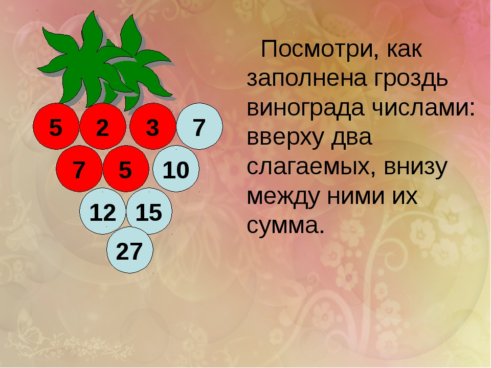 2 12 15 5 5 10 27 7 3 7 Посмотри, как заполнена гроздь винограда числами: вве...