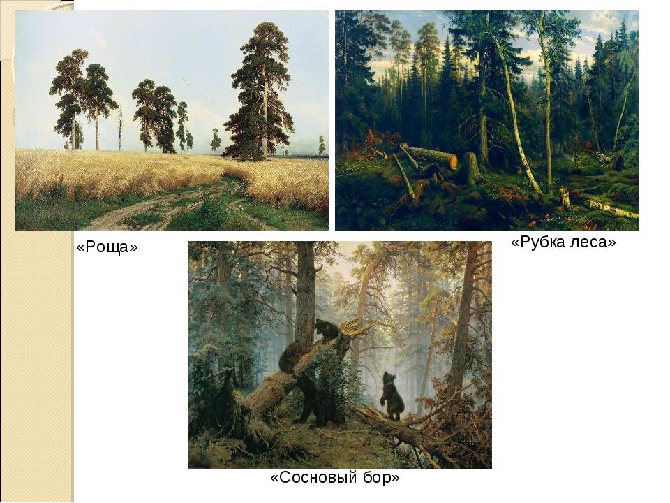 «Роща» «Рубка леса» «Сосновый бор»